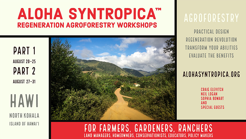 Aloha Syntropica Regeneration Agroforestry Workshops
