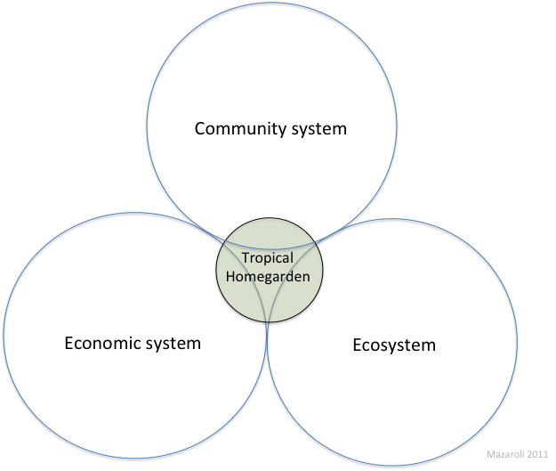 Figure 2 Conceptual model of the network of influence that a single THG has on other systems