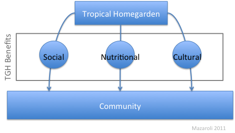 Figure 3 Three categories of benefits that a THG provides a community