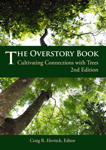 overstory book